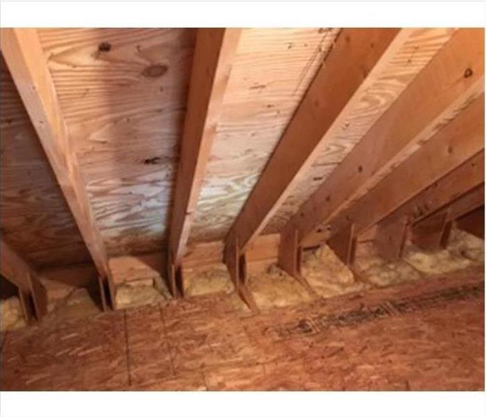Mold Damage – Concord Attic After