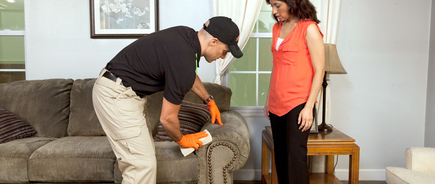 Concord, NH carpet upholstery cleaning